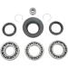 Moose Racing Rear Differential Bearing and Seal Kit - Honda