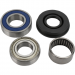 ALL BALLS Chain Case Bearing and Seal Kit