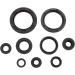 Moose Racing Motor Seals CRF250R/X