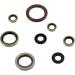 Moose Racing Engine Oil Seal Kit - KTM
