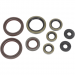 Moose Racing Motor Seals 450/530EXC