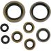 Moose Racing Motor Seals EXC/SX/MXC
