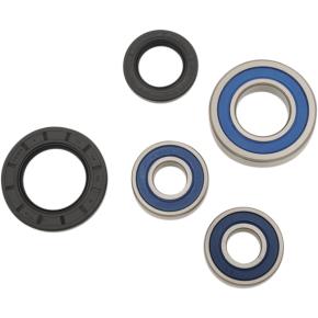 ALL BALLS Wheel Bearing - Kit - Rear - DL650