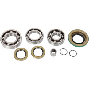 Moose Racing Right Rear Differential Bearing Kit - Canam